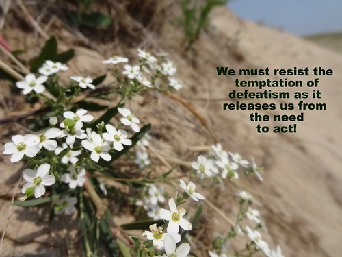 We must resist the  temptation of defeat by m.gifford, on Flickr