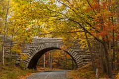 Acadia National Park In Color (Me in ME) Tags: bridge autumn fall leaves fallcolor maine canon5d acadianationalpark stonearchbridge duckbrookroad lightroom5 paradisehillroad