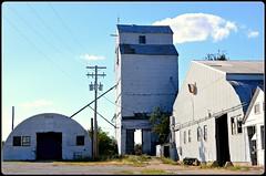 Ipava Grain Elevator (kbbrawley5) Tags: illinois beans corn kurt farm wheat elevator grain il ag agriculture grainelevator fultoncounty grainbin ipava fultonco kurtb fultoncoil ipavail kurtbrawley kbbrawley5