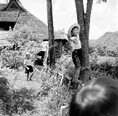 Boys in Hats & Tree - 1950s Japan (Vintage Japan-esque) Tags: old boy playing tree boys hat japan kids vintage fence japanese child hats climbing 1950s foundphotograph