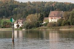 Bibermhli - Bibernhofgut ( Bibermhle - Hauptgebude 1528 - Sulzerschen Villa 1918 ) am Ufer des Rhein ( Hochrhein - Fluss - River ) in der Gemeinde Ramsen im Kanton Schaffhausen der Schweiz (chrchr_75) Tags: chriguhurnibluemailch christoph hurni schweiz suisse switzerland svizzera suissa swiss chrchr chrchr75 chrigu chriguhurni 1410 oktober 2014 rhein fluss river hochrhein albumrhein albumhochrhein oktober2014 hurni141012 rhin reno rijn rhenus rhine rin strom europa joki rivire fiume  rivier rzeka rio flod ro