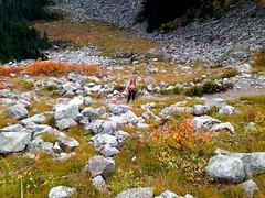 IMG_0197 (cpliler) Tags: hiking maplepassloop