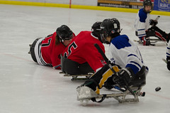 20141013-DSC_6664 (nunymare) Tags: canada hockey team women edmonton canadian womens national impact sledge leduc