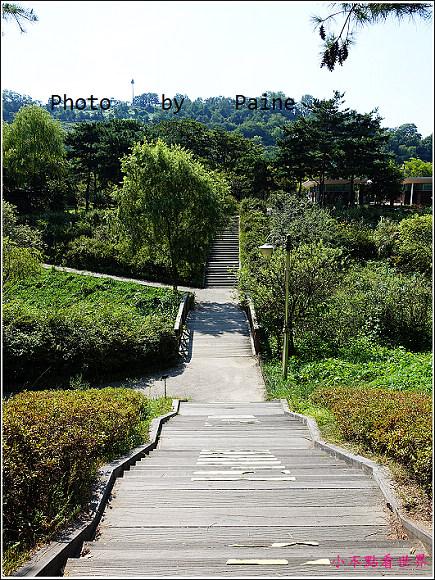 首爾 天空公園 (2).JPG