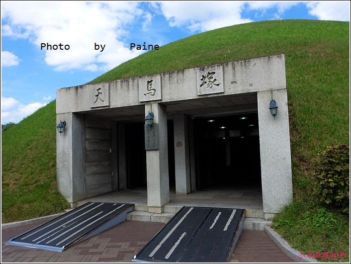 03大陵苑 天馬塚 (24).JPG