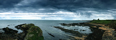 Fife coast south of St Monans (andywilson1963) Tags: panorama landscape coast scotland rocks fife forth geology firth