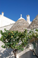"trulli (6) <a style=""margin-left:10px; font-size:0.8em;"" href=""http://www.flickr.com/photos/118782612@N04/15523195237/"" target=""_blank"">@flickr</a>"