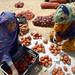 Western Sahara: Bringing fresh food to the desert