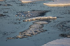 New Ice Forming on a Frigid Sea Ice Floes Lancaster Sound Canada High Arctic (eriagn) Tags: 70thanniversarystroch akademikioffe akademikvavilov arcticskies arid beardedseal birdsanctuary birding birds bleak blinding calm canada canadianarctic climate cold cubs devonisland documentary eriagn expedition extreme franklinexpedition frigid fulmars geology grey higharctic historic history ice icefloes iceberg inuit kill kittiwakes lancastersound landscape mirrored moodiness nature nesting ngairehart northamerica northwestpassage nunavut parrychannel photography polarbear polarbearfemale polarbeartwins prey princeleopoldisland princeregentinlet qausuittuq qikiqtaaluk quttiktuq remote rock russianscientificvessel seamammal seal season sheer spectacular strata summer survival weather white wildlife zodiac natureasabstractartist