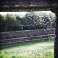 Im Herbst werden die Netze enger geknüpft. | Autumn spinning mill.  #herbst #hooray #hoorayfortoday #autumn #herbst2014 #spinningmill #webs #spinnenweben #spidersweb #spinnennetz #magdeburg #travel #travelblog #travelingram #traveltheworld #morning