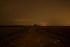 After sunset (Lo Zatto) Tags: longexposure yellow fog night countryside nikon campagna ravenna lightpollution d600 carcosa inquinamentoluminoso truedetective yellowking
