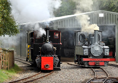 veteran trio (midcheshireman) Tags: train shed steam ww1 locomotives narrowgauge engineshed apedale