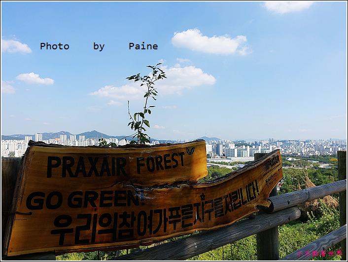 首爾 天空公園 (44).JPG