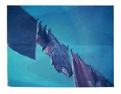 (moxiee) Tags: camera film polaroid land peel expired apart roidweek2014