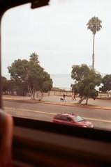 almost (spitting venom) Tags: california road film window car 35mm coast pentax palmtree traveling trainride pentaxfilm