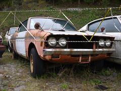 Mitsubishi Galant GTO (mega_midget_racer) Tags: trees tree cars abandoned car drive  gto touring rustycars