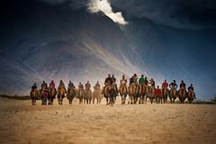 Sand dune (joeziz EK pholrojpanya) Tags: india kashmir leh himalayas ladakh jammu