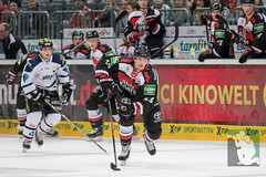 "DEL15 Kölner Haie vs. ERC Ingolstadt 19.10.2014 098.jpg • <a style=""font-size:0.8em;"" href=""http://www.flickr.com/photos/64442770@N03/15599136186/"" target=""_blank"">View on Flickr</a>"