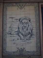 Azulejo de la farmacia de la calle del León. Madrid (Carlos Viñas-Valle) Tags: madrid leon azulejo farmacia robles