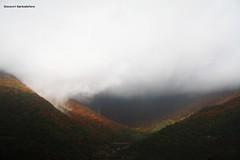 - Pioggia d'autunno (Giovanni Santostefano) Tags: autumn rain  autunno pioggia