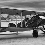 Bristol Fighter F2B.