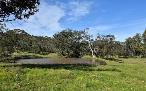 Lovat East Turanville Road, Scone NSW 2337