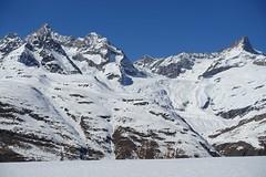 Depuis le train du Gornergrat (Iris_14) Tags: gornergrat gornergratbahn alps zermatt valais wallis montagnes mountains alpes neige glacier swissalps switzerland schweiz suisse