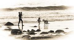 beach (www.infografiagijon.es) Tags: wwwinfografiagijones infografia gijon astur asturias asturies xixon hernancad canon eos5d markii blanco negro black white bw bn people gente