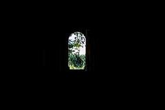 Casarão Abandonado (Amandla Rocha) Tags: araraquara acidadeon casarão abandono patrimôniohistórico memórias abandonado ruínas escravos