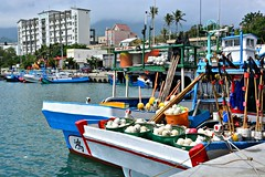 Chenggong Fishing Port, Taiwan (Mark Tindale) Tags: ribbet fishingport fishing taiwan taiwanese eastcoast national scenic fish sustainability overfishing seafood port chenggong market auction chinese carpark shark population pacific ocean sea boat 成功鎮 成功 taitung