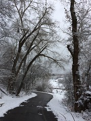 IMG_2218 (augiebenjamin) Tags: winter provocanyon mountains orem provo lindon utah snow clouds trees sky byu brighamyounguniversity art