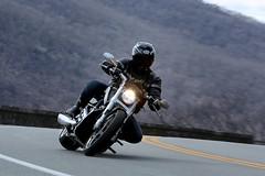 Harley-Davidson V-Rod 1704027481w (gparet) Tags: bearmountain bridge road scenic overlook outdoor outdoors motorcycle motorcycles motorcyclist goattrail goatpath windingroad curves twisties