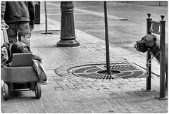 boy & dog (Wanderfull1) Tags: boy muzzleddog dog stephenavenue downtown calgary