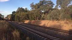 Barnawartha Ballast (jaymcghee10) Tags: railway pushpulltrain 81class artc pacificnational ballasttrain barnawartha albury