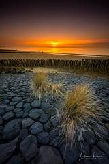 Rocks And Breakwaters (Alec Lux) Tags: nieuwesluis beach breakwater coast coastline groyne landscape landscapephotography nature naturephotography netherlands ocean pattern rocks sand sea seascape seascapephotography sunlight sunset sunsetphotography texture breskens zeeland nl