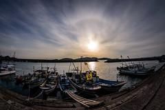 港に出たハローHalo seen from the harbor (kurumaebi) Tags: yamaguchi 秋穂 山口市 nikon d750 nature landscape sea sunset dusk halo ハロ