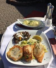 Meer Fisch (Christian Jena) Tags: cafe buhne 12 ahrenshoop fischteller zander kabeljau scholle