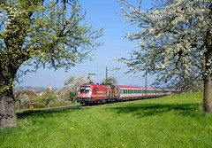 1016 048 ÖBB (Daniel Powalka) Tags: wetter eisenbahn elok eurocity railroads railways railway rail railroad train trainspotting track trainspotter tree taurus zug photo photographer photos photography photographie panorama award artland wiese spotting strecke schiene sonne schwäbischealb deutschland d750 db fotografie foto fotograf fotos flickr filstal filsbahn germany himmel objektiv kbs750 loco lokomotiven lokführer lokomotive landschaft landscape landschaften lok verkehr badenwürttemberg bahn nikon nikkor natur nikond750 blüte apfelblüte