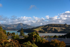 Sea All Muddy from the Rain (Jocey K) Tags: newzealand southisland canterbury bankspeninsula akaora scene hills trees sky clouds akaoraharbour nikond750