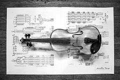 framed (Janelle Tong) Tags: janelle tong photography tony ward studio still life upenn houston hall violin traditional black angels music birdseye view horizontal white canon eos rebel t5