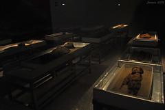 Momias Chinchorro, las más antiguas del mundo / Chinchorro mummies, the oldest in the world (Javiera C) Tags: museo museum chile sanmigueldeazapa azapa momias mummies chinchorro old antiguo cultura culture exhibición exhibition arqueología archeology patrimonio heritage indoor