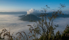 My love I (Vagabundina) Tags: asia indonesia java eastjava bromo merapi volcano morning mist fog sun sunrise sky clouds scenery landscape panorama nature mountain atmosphere atmospheric nikon nikond5300 dsrl breathtaking