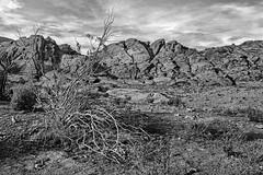 Red Rock Canyon (Mike Schaffner) Tags: bw blackwhite blackandwhite canyon monochrome nationalpark park redrock redrockcanyon redrockcanyonnationalconservationarea rockformation rocks lasvegas nevada unitedstates us