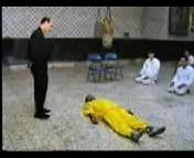 Katalepsy,Hypnotism,Magnetism- Supreme Master Mohammad Reza Yahyaei