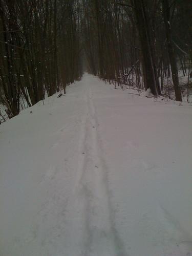 Cutting trails