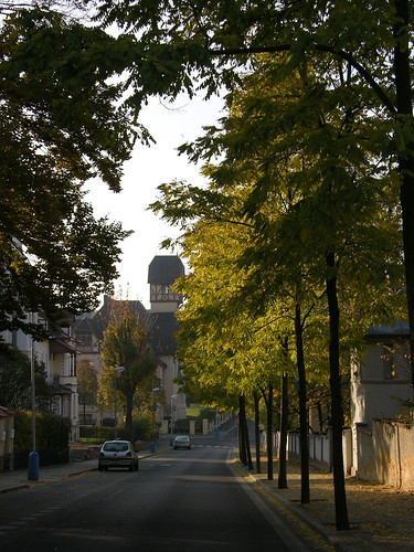 2010-10-30 Street in Teplice 6