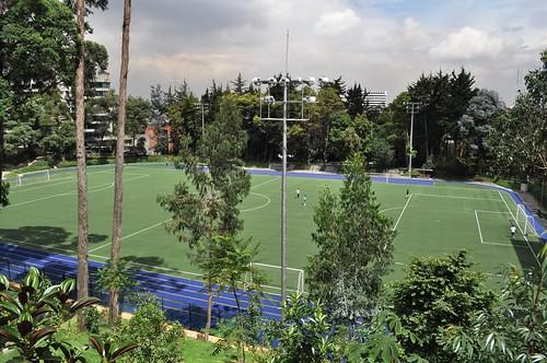 Fútbol Árboles & Verde
