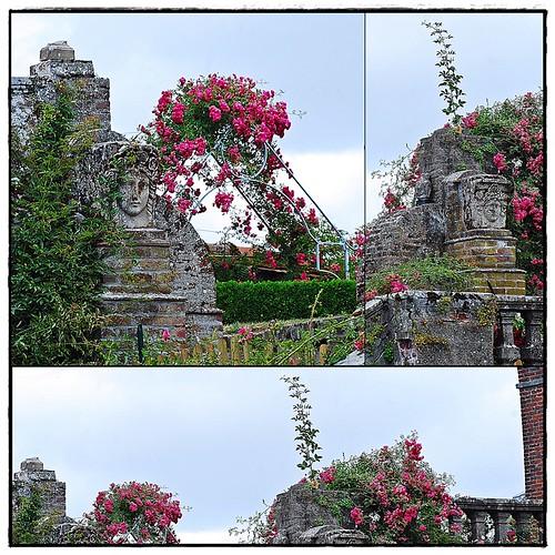 34 - 15 juillet 2010 Gerberoy Les jardins du Vidamé Pierres et roses