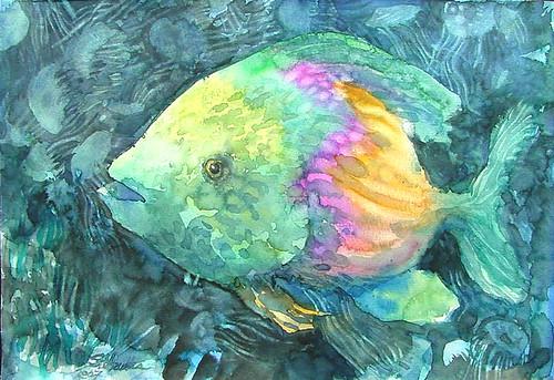 Fish and Jellyfish
