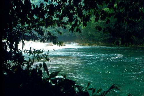 Agua Azul -  Chiapas  -  México